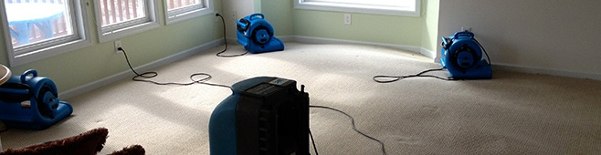 Water Damage Restoration Experts Of Boulder Colorado And
