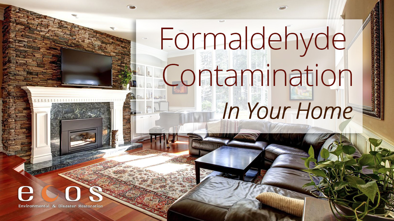 Formaldehyde Contamination in Your Home
